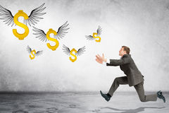Business man running to catch flying dollar sign. On gray background Royalty Free Stock Image