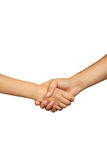 Business man shake hand, close up stock images