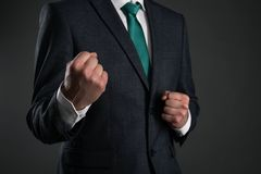 Business man. royalty free stock images