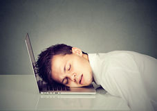 Business man sleeping on his laptop. Young business man sleeping on his laptop Royalty Free Stock Image