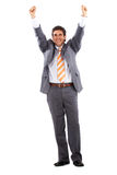 Business man standing - success Royalty Free Stock Photo