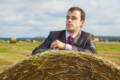 A business man in a suit Royalty Free Stock Image