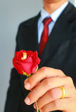 Business man in suit showing rose and wedding ring Royalty Free Stock Photo