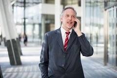 Business man using a cell phone Stock Images