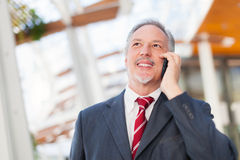 Business man using a cell phone Stock Image