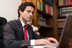 Business man using a computer Royalty Free Stock Images