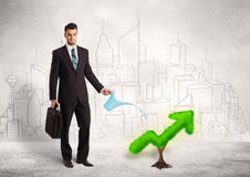 Business man watering green plant arrow Royalty Free Stock Photo