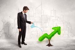 Business man watering green plant arrow Royalty Free Stock Images