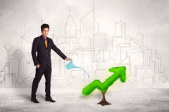 Business man watering green plant arrow. Concept on background Royalty Free Stock Photos