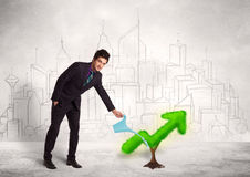 Business man watering green plant arrow Stock Images