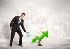 Business man watering green plant arrow Stock Image