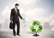 Business man watering green recycle sign tree on city background Royalty Free Stock Image