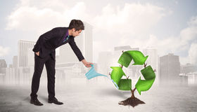 Business man watering green recycle sign tree on city background Royalty Free Stock Photography