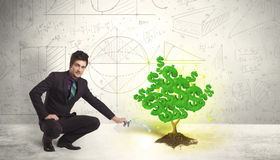 Business man watering a growing green dollar sign tree Stock Images