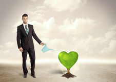 Business man watering heart shaped green tree Stock Photo