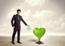 Business man watering heart shaped green tree Stock Photos