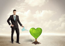 Business man watering heart shaped green tree Royalty Free Stock Photography