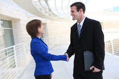 Business Man and Woman Handshake Stock Image