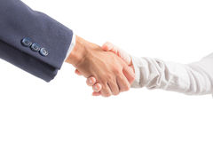 Business man and woman shaking hand Stock Image