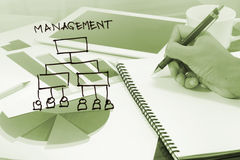 Business management diagram Royalty Free Stock Photos