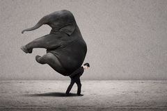 Business manager carry elephant on grey - leadership concept Royalty Free Stock Photography