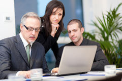 Business meeting: group of businesspeople at work Royalty Free Stock Photo