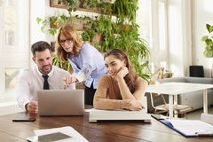 Business meeting in the office. Group of financial business people brainstorming in the office stock image