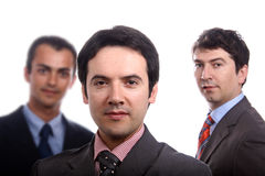 Business men. Three young business men portrait on white Royalty Free Stock Photos