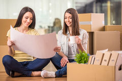 Business move Stock Images