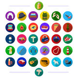 Business, nature, science and other web icon in flat style.music, army, cosmetics, icons in set collection. Royalty Free Stock Photography