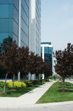 Business Offices. Business office buildings with path and trees royalty free stock photography