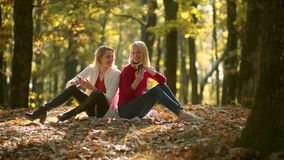Business outdoor. Working in nature. Girls with phone. Two girls using smart phone. Message. Autumn portrait of stock video