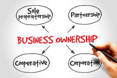 Business ownership Royalty Free Stock Photos