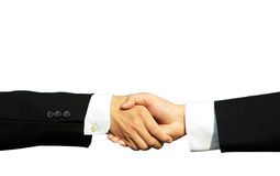 Business partners. Two businessmen shaking hands in isolated white Stock Photos