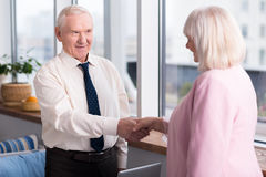 Business partners greeting each other Stock Photography