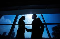 Business partners handshaking Stock Photo
