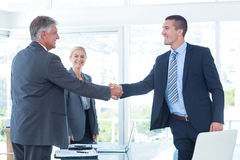 Business partners shaking hands. In the office Royalty Free Stock Photo