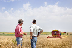 Business partners on wheat field Royalty Free Stock Image