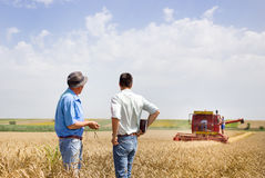 Business partners on wheat field royalty free stock photography