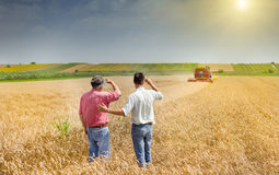 Business partners on wheat field Stock Photography