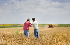 Business partners on wheat field Royalty Free Stock Photo
