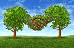 Business Partnership Growth Success. With two growing green trees in the shape of two hands  hand shaking together as a financial symbol of agreement and Stock Photos