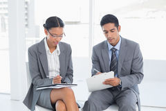 Business people in board room meeting. Two young business people in board room meeting at office Royalty Free Stock Image