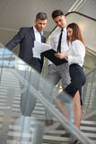 Business people discussing documents and ideas. Business Team Royalty Free Stock Image
