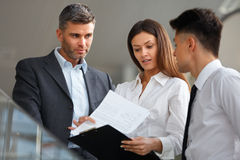Business people discussing documents and ideas. Business Team Stock Photos