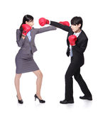 Business  people  fight Royalty Free Stock Image