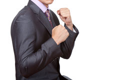 Business People Fist Royalty Free Stock Image