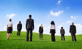 Business People in a Green Field.  royalty free stock photo