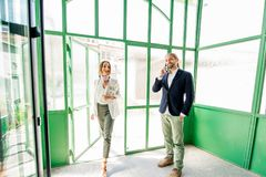 Business people in the green hall stock image