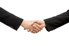 Business people handshaking closing a deal Royalty Free Stock Images